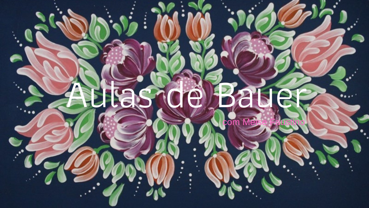 Aulas-de-Bauer-1